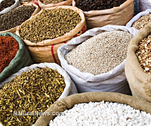 Bulk-Foods-Herbs-Seeds-Grains-Beans-rice