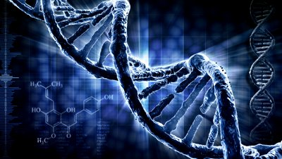 Geneticists are Spell Bound By Discovery of DNA That ...